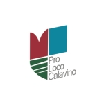 logo PLCalavino 1 prospett
