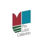 logo PLCalavino 2 prospett
